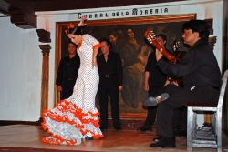 07_Flamenco_Corral_De_La_Moreria_Madrid.jpg