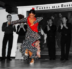 14_Flamenco_Corral_De_La_Moreria_Madrid.jpg