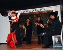 10_Flamenco_Corral_De_La_Moreria_Madrid.jpg