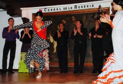 13_Flamenco_Corral_De_La_Moreria_Madrid.jpg