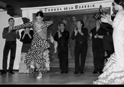 15_Flamenco_Corral_De_La_Moreria_Madrid.jpg