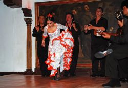 03_Flamenco_Corral_De_La_Moreria_Madrid.jpg