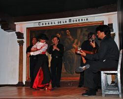 12_Flamenco__Corral_De_La_Moreria_Madrid.jpg