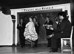 06_Flamenco_Correl_De_La_Moreria_Madrid.jpg